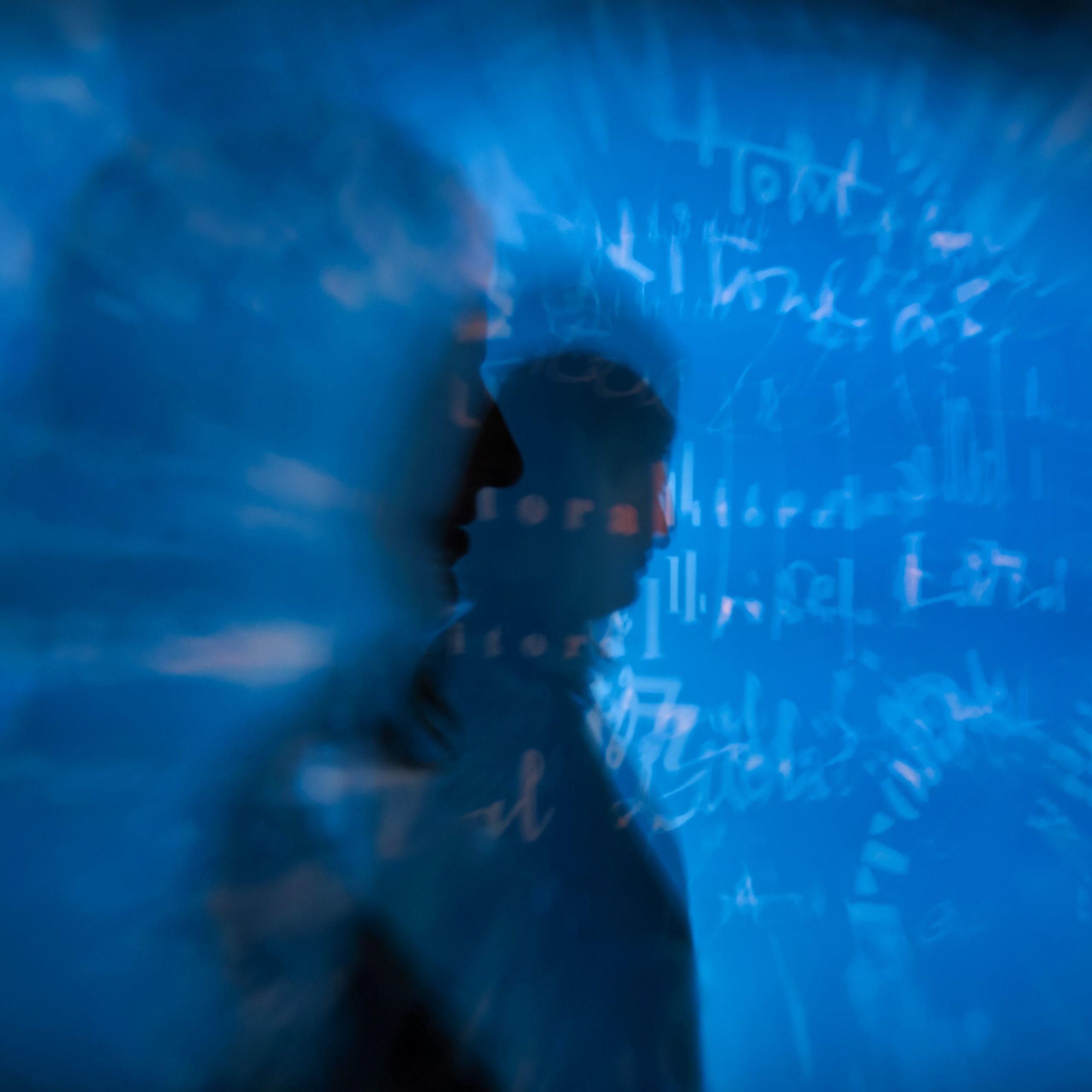 Entre art et nouvelles technologies : Polyfolies