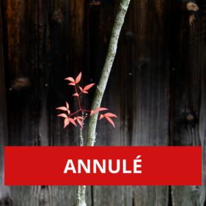 ANNULÉ - Côté cour - Côté jardin: haïkus dansés et chantés par l'artiste mAL
