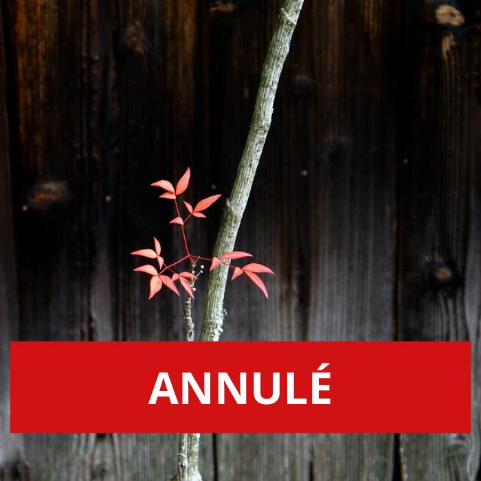 ANNULÉ – Côté cour – Côté jardin: haïkus dansés et chantés par l'artiste mAL