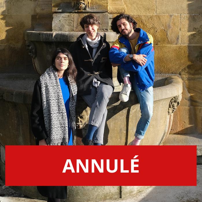 ANNULÉ – Au fil de la traduction poétique – lecture bilingue et commentée de trois célèbres auteures anglophones du XXe siècle