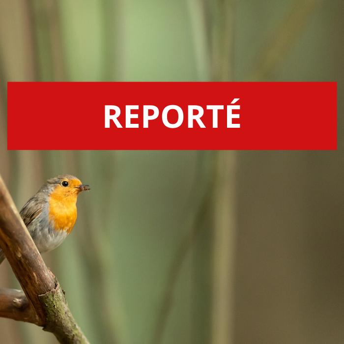 REPORTÉ – Poèmes et chants de la nature: quand la poésie contemporaine résonne avec la musique romantique